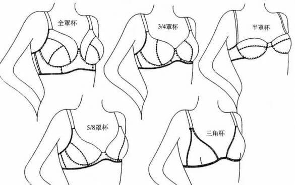 女人内衣款式分类